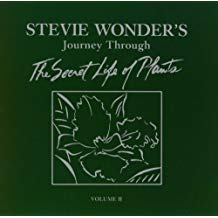 Stevie Wonder - Secret Life of Plants